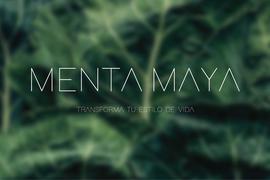 Menta Maya
